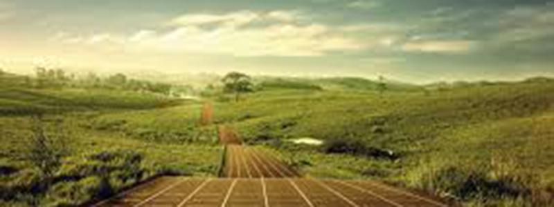 XII Jornadas de Salud y Deporte en la UNC