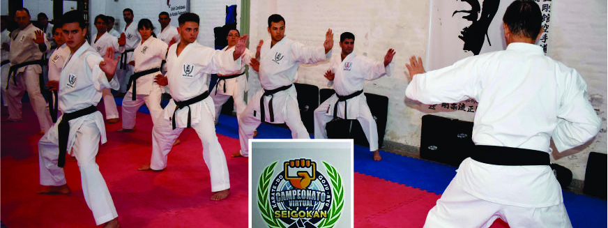 KARATE: La Seigokan Argentina se prepara para el desafío internacional de kata