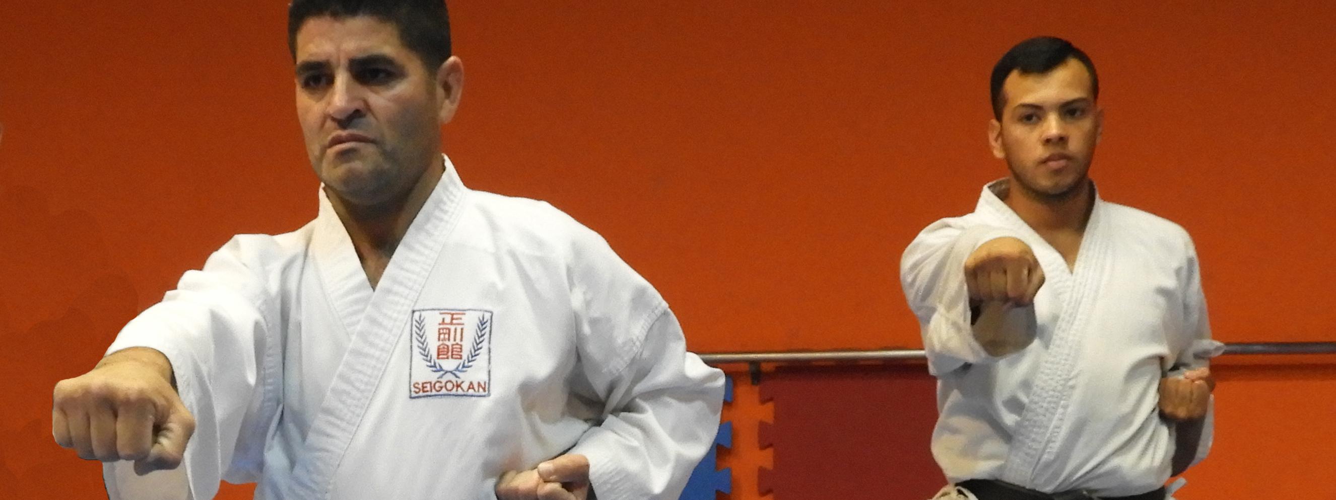 KARATE: Los aportes de la escuela argentina a la Goju Ryu Seigokan